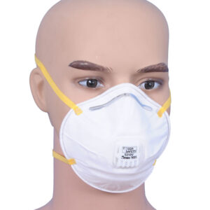 ToughSafety - Dust Mask - 5310V